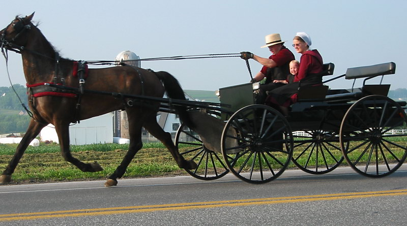 Amish wooden products
